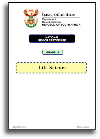 Download NSC Grade 12 Past Exams and Matric memo - Gapup